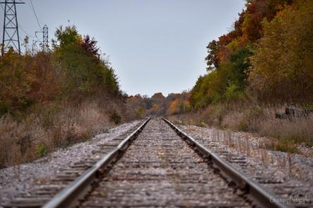 Windsor rr track